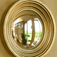 Fish Eye Mirror
